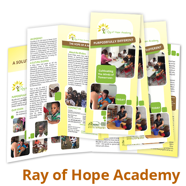Ray of Hope Academy Brochure